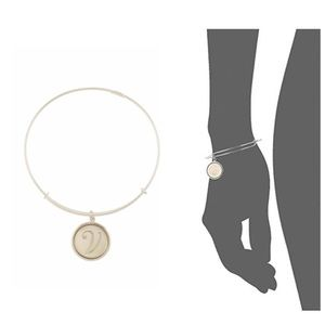 "Alex and Ani Argentium Silver ""V"" Charm Bracelet"